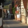 Pleisweiler_Morgensonne