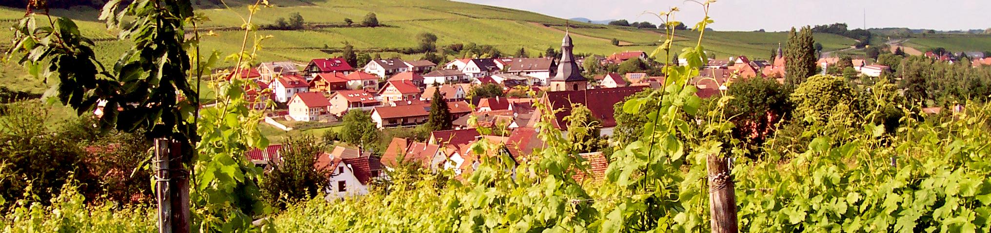 Pleisweiler-Oberhofen